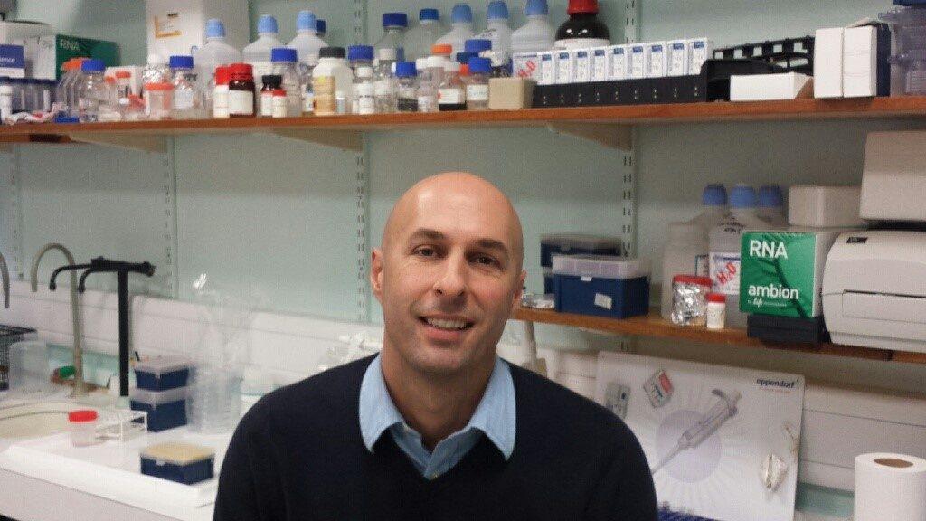 Professor Stephen Beers